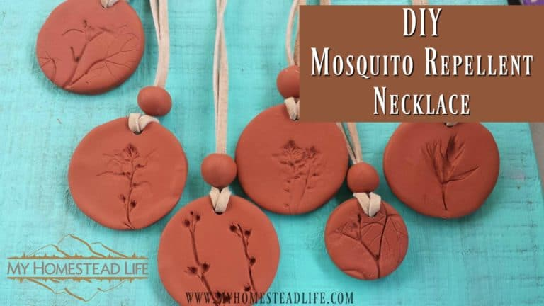 DIY Mosquito Repellent Necklace, beautiful and effective!