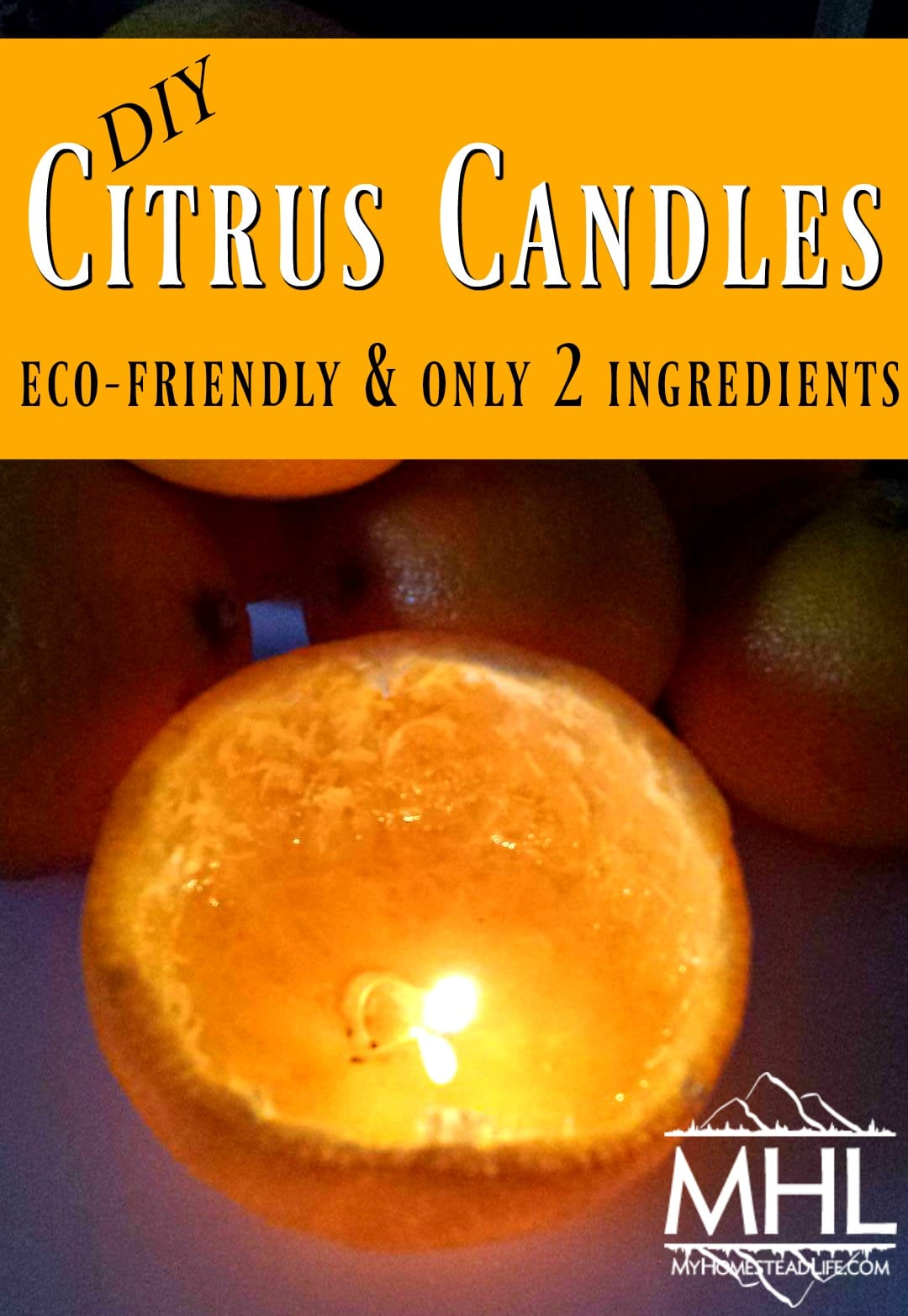DIY Citrus Candles. Eco-Friendly, Easy to Make and only 2 Ingredients!