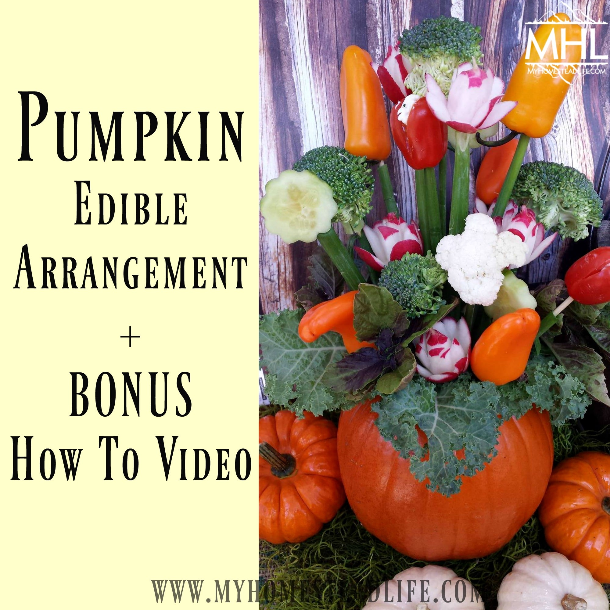Pumpkin Edible Arrangement + BONUS How To Video