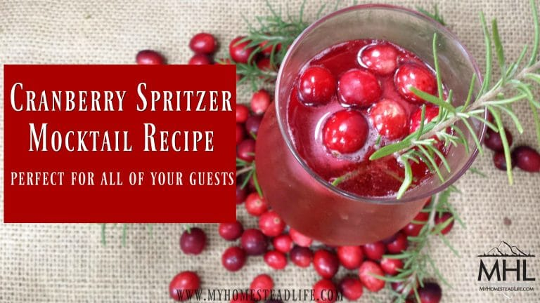 Cranberry Spritzer Mocktail Recipe, Perfect for All Of Your Guests